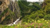 उत्तराखंड में विश्व प्रसिद्ध फूलों की घाटी में आपका स्वागत